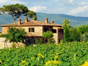 Agriturismo Villa Rosa